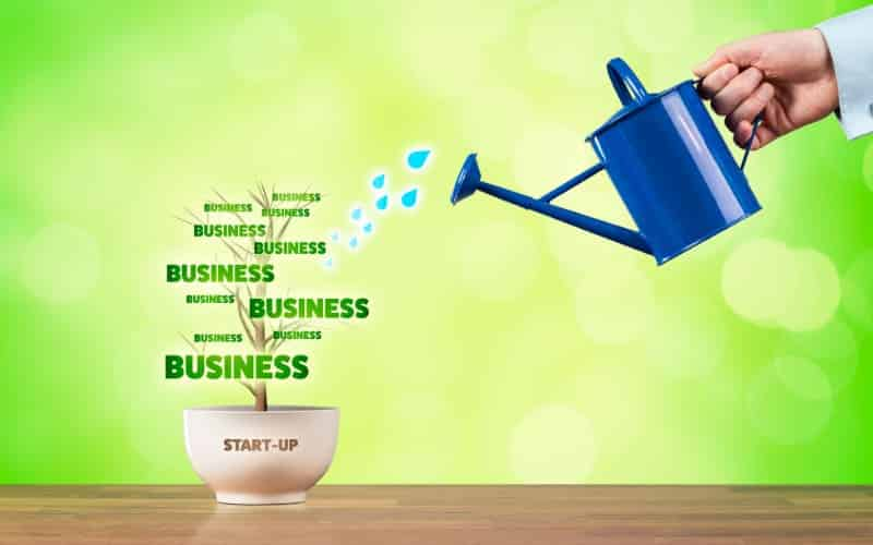 How To Start A Business With No Money What Steps To Follow